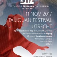 STN-Festival17-flyer