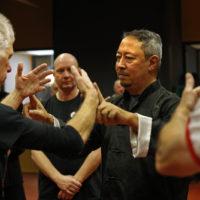 Workshop Job Koesoemobroto, Taijiquan Festival 2017, Utrecht