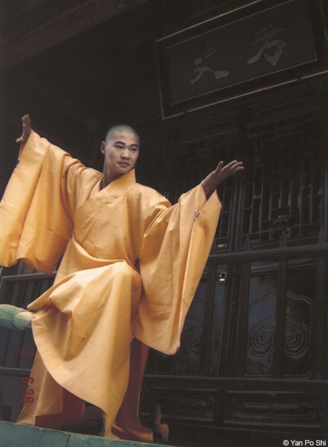 Workshop Shaolin Yi Jin Jing - Fase 1 (Grootmeester Shi Yan Po) - Stichting Taijiquan Nederland